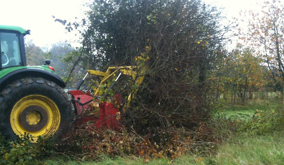 Hedge mulching in preparation for development in the Vale of Glamorgan